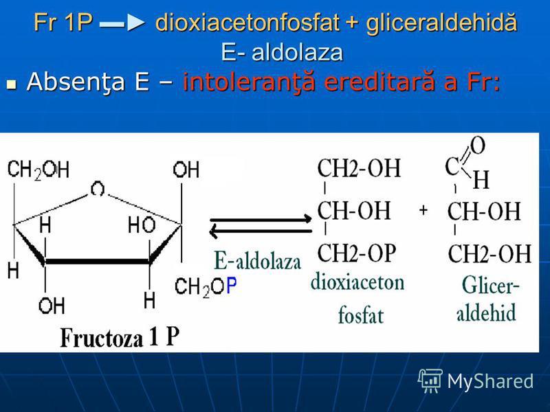 Fr 1P dioxiacetonfosfat + gliceraldehidă E- aldolaza Absenţa E – intoleranţă ereditară a Fr: Absenţa E – intoleranţă ereditară a Fr: