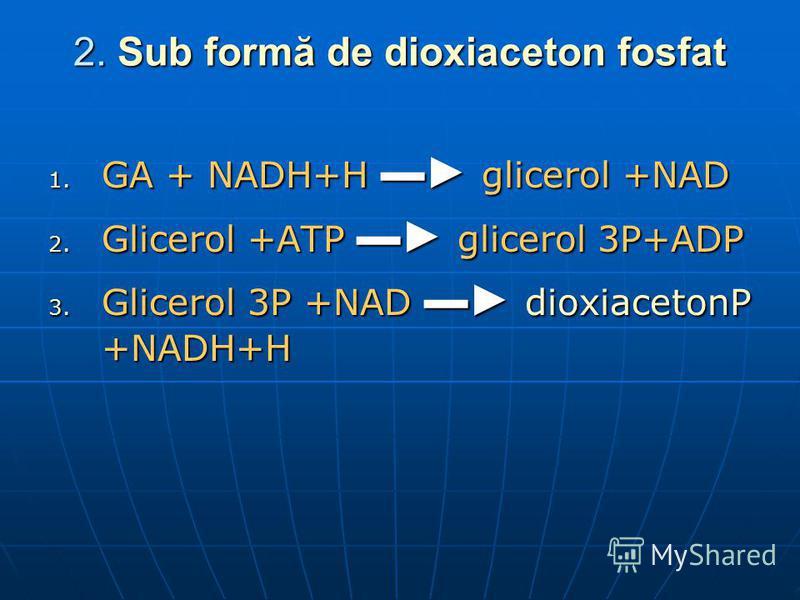 2. Sub formă de dioxiaceton fosfat 1. GA + NADH+H glicerol +NAD 2. Glicerol +ATP glicerol 3P+ADP 3. Glicerol 3P +NAD dioxiacetonP +NADH+H