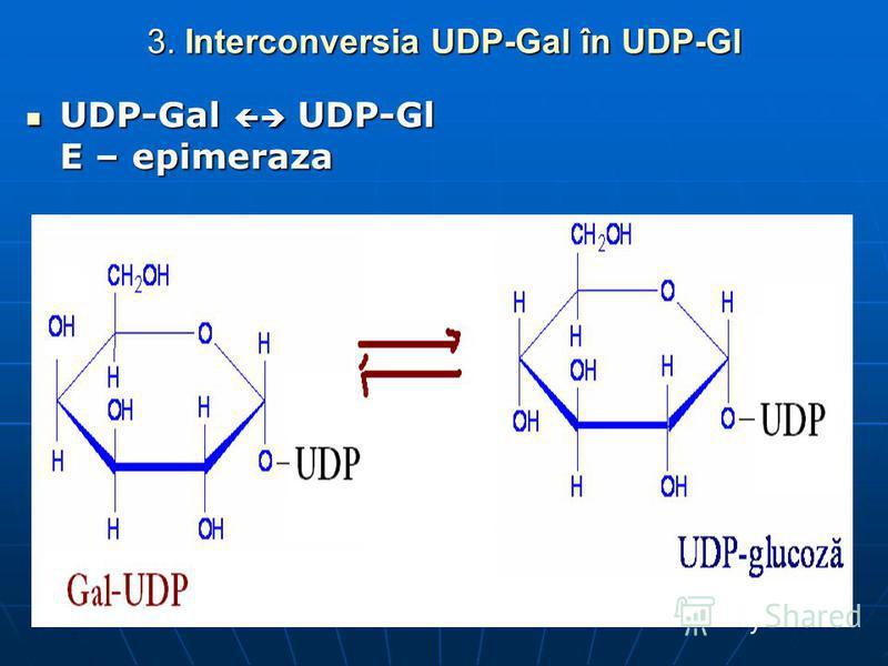 3. Interconversia UDP-Gal în UDP-Gl UDP-Gal UDP-Gl E – epimeraza UDP-Gal UDP-Gl E – epimeraza