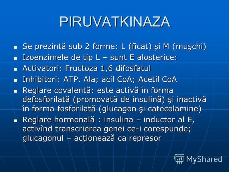 PIRUVATKINAZA Se prezintă sub 2 forme: L (ficat) şi M (muşchi) Se prezintă sub 2 forme: L (ficat) şi M (muşchi) Izoenzimele de tip L – sunt E alosterice: Izoenzimele de tip L – sunt E alosterice: Activatori: Fructoza 1,6 difosfatul Activatori: Fructo