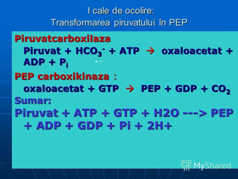I cale de ocolire: Transformarea piruvatului în PEP I cale de ocolire: Transformarea piruvatului în PEP Piruvatcarboxilaza Piruvat + HCO 3 - + ATP oxaloacetat + ADP + P i PEP carboxikinaza : oxaloacetat + GTP PEP + GDP + CO 2 Sumar: Piruvat + ATP + G