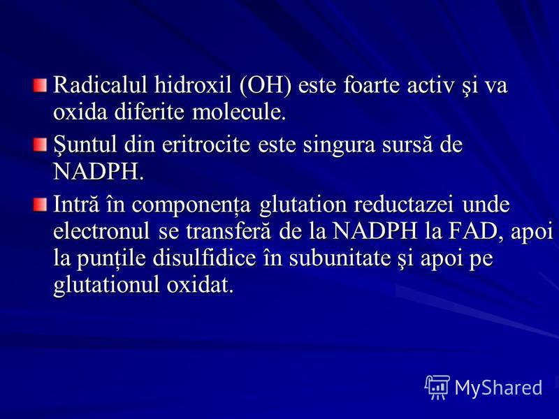Radicalul hidroxil (OH) este foarte activ şi va oxida diferite molecule. Şuntul din eritrocite este singura sursă de NADPH. Intră în componenţa glutation reductazei unde electronul se transferă de la NADPH la FAD, apoi la punţile disulfidice în subun