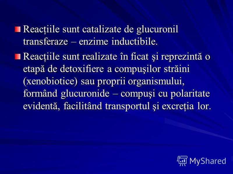 Reacţiile sunt catalizate de glucuronil transferaze – enzime inductibile. Reacţiile sunt realizate în ficat şi reprezintă o etapă de detoxifiere a compuşilor străini (xenobiotice) sau proprii organismului, formând glucuronide – compuşi cu polaritate