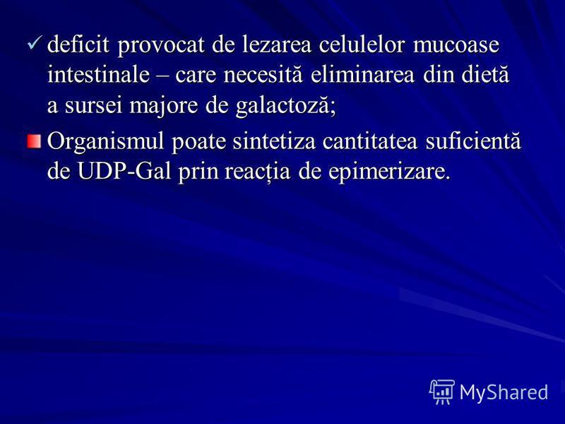 deficit provocat de lezarea celulelor mucoase intestinale – care necesită eliminarea din dietă a sursei majore de galactoză; deficit provocat de lezarea celulelor mucoase intestinale – care necesită eliminarea din dietă a sursei majore de galactoză;