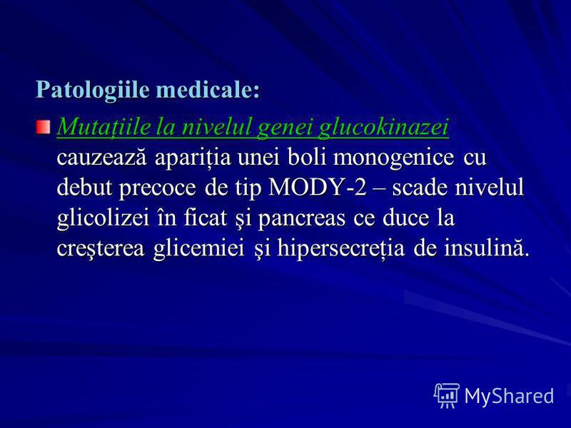Patologiile medicale: Mutaţiile la nivelul genei glucokinazei cauzează apariţia unei boli monogenice cu debut precoce de tip MODY-2 – scade nivelul glicolizei în ficat şi pancreas ce duce la creşterea glicemiei şi hipersecreţia de insulină.