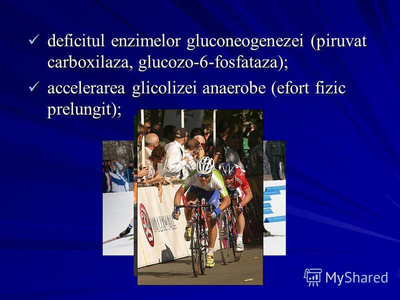 deficitul enzimelor gluconeogenezei (piruvat carboxilaza, glucozo-6-fosfataza); deficitul enzimelor gluconeogenezei (piruvat carboxilaza, glucozo-6-fosfataza); accelerarea glicolizei anaerobe (efort fizic prelungit); accelerarea glicolizei anaerobe (