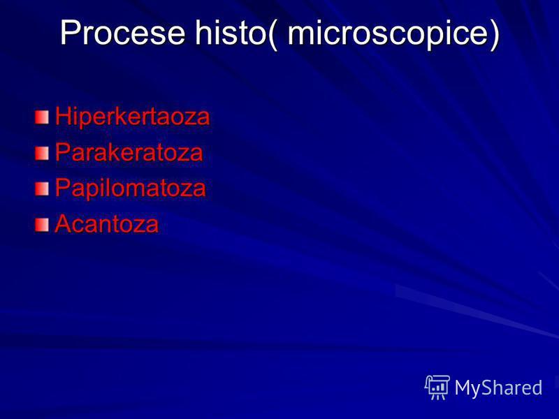 Procese histo( microscopice) HiperkertaozaParakeratozaPapilomatozaAcantoza