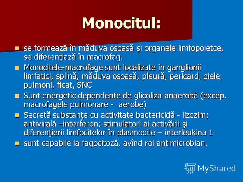 Monocitul: se formează în măduva osoasă şi organele limfopoietce, se diferenţiază în macrofag. se formează în măduva osoasă şi organele limfopoietce, se diferenţiază în macrofag. Monocitele-macrofage sunt localizate în ganglionii limfatici, splină, m