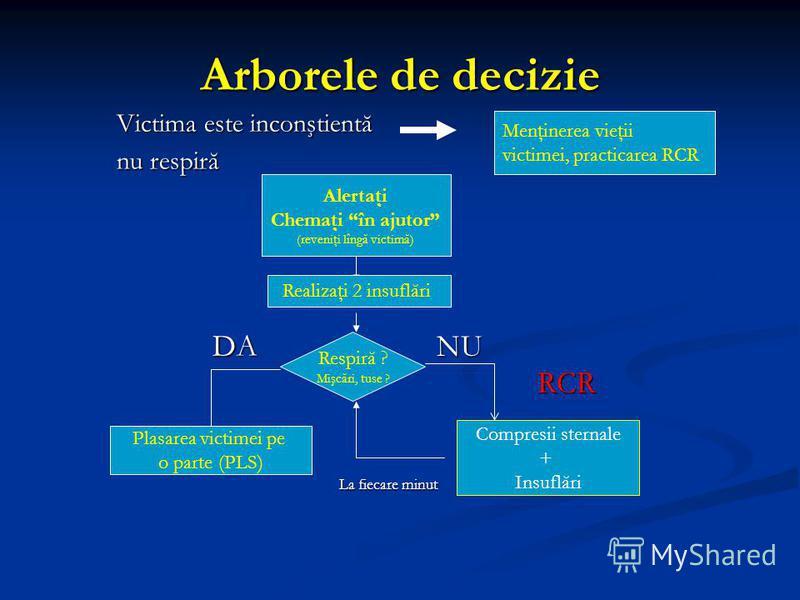 Arborele de decizie Victima este inconştientă nu respiră DANU DANU RCR RCR La fiecare minut La fiecare minut Menţinerea vieţii victimei, practicarea RCR Alertaţi Chemaţi în ajutor (reveniţi lîngă victimă) Realizaţi 2 insuflări Respiră ? Mişcări, tuse