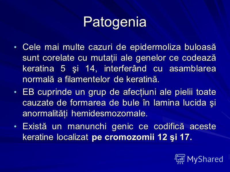 Patogenia Cele mai multe cazuri de epidermoliza buloasă sunt corelate cu mutaţii ale genelor ce codează keratina 5 şi 14, interferând cu asamblarea normală a filamentelor de keratină. Cele mai multe cazuri de epidermoliza buloasă sunt corelate cu mut