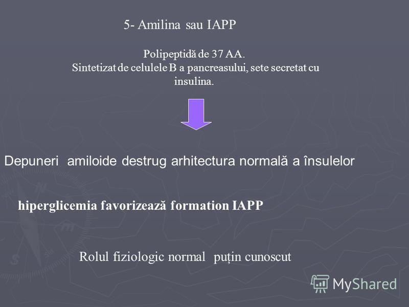 5- Amilina sau IAPP Polipeptidă de 37 AA. Sintetizat de celulele B a pancreasului, sete secretat cu insulina. Depuneri amiloide destrug arhitectura normală a însulelor hiperglicemia favorizează formation IAPP Rolul fiziologic normal puţin cunoscut