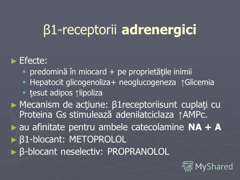 β1-receptorii adrenergici Efecte: predomină în miocard + pe proprietăţile inimii Hepatocit glicogenoliza+ neoglucogeneza Glicemia ţesut adipos lipoliza Mecanism de acţiune: β1receptoriisunt cuplaţi cu Proteina Gs stimulează adenilatciclaza AMPc. au a