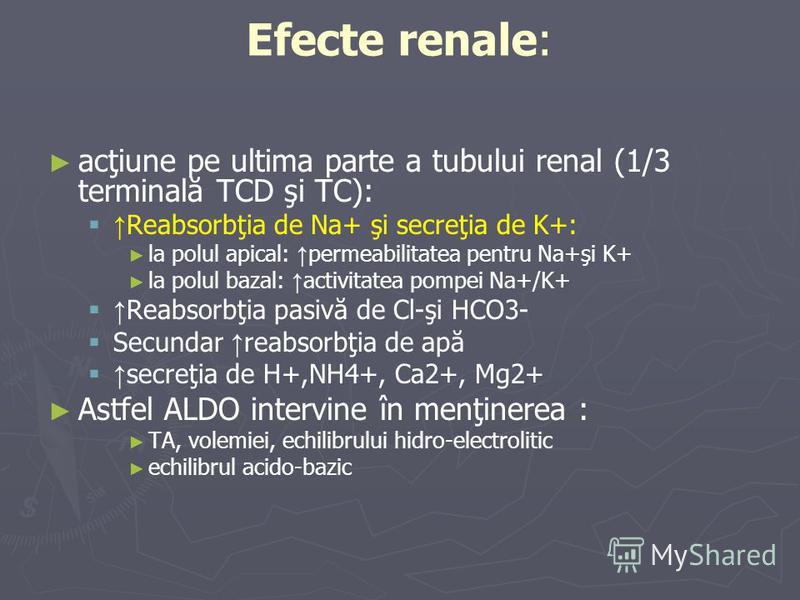 Efecte renale: acţiune pe ultima parte a tubului renal (1/3 terminală TCD şi TC): Reabsorbţia de Na+ şi secreţia de K+: la polul apical: permeabilitatea pentru Na+şi K+ la polul bazal: activitatea pompei Na+/K+ Reabsorbţia pasivă de Cl-şi HCO3- Secun