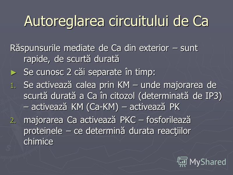 Autoreglarea circuitului de Ca Răspunsurile mediate de Ca din exterior – sunt rapide, de scurtă durată Se cunosc 2 căi separate în timp: Se cunosc 2 căi separate în timp: 1. Se activează calea prin KM – unde majorarea de scurtă durată a Ca în citozol