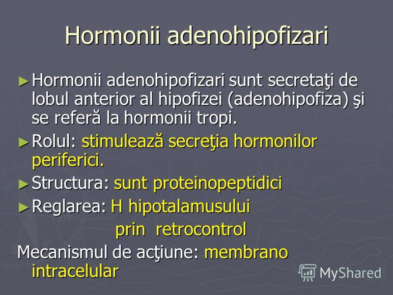 Hormonii adenohipofizari Hormonii adenohipofizari sunt secretaţi de lobul anterior al hipofizei (adenohipofiza) şi se referă la hormonii tropi. Hormonii adenohipofizari sunt secretaţi de lobul anterior al hipofizei (adenohipofiza) şi se referă la hor