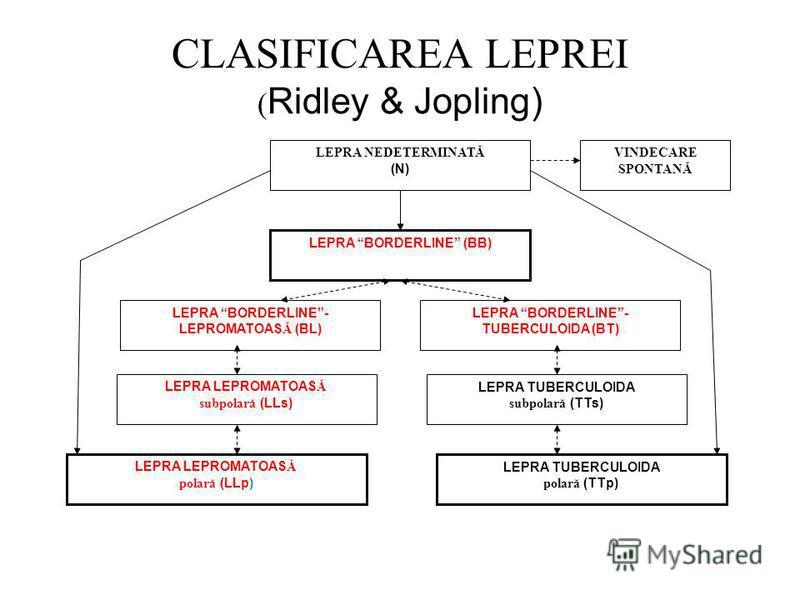 CLASIFICAREA LEPREI ( Ridley & Jopling) LEPRA TUBERCULOIDA subpolară (TTs) LEPRA LEPROMATOAS Ă subpolară (LLs) LEPRA BORDERLINE (BB) LEPRA BORDERLINE- TUBERCULOIDA (BT) LEPRA BORDERLINE- LEPROMATOAS Ă (BL) LEPRA NEDETERMINATĂ (N) VINDECARE SPONTANĂ L