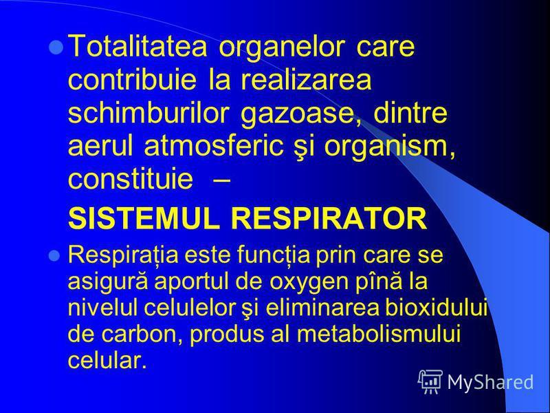 Totalitatea organelor care contribuie la realizarea schimburilor gazoase, dintre aerul atmosferic şi organism, constituie – SISTEMUL RESPIRAТOR Respiraţia este funcţia prin care se asigură aportul de oxygen pînă la nivelul celulelor şi eliminarea bio