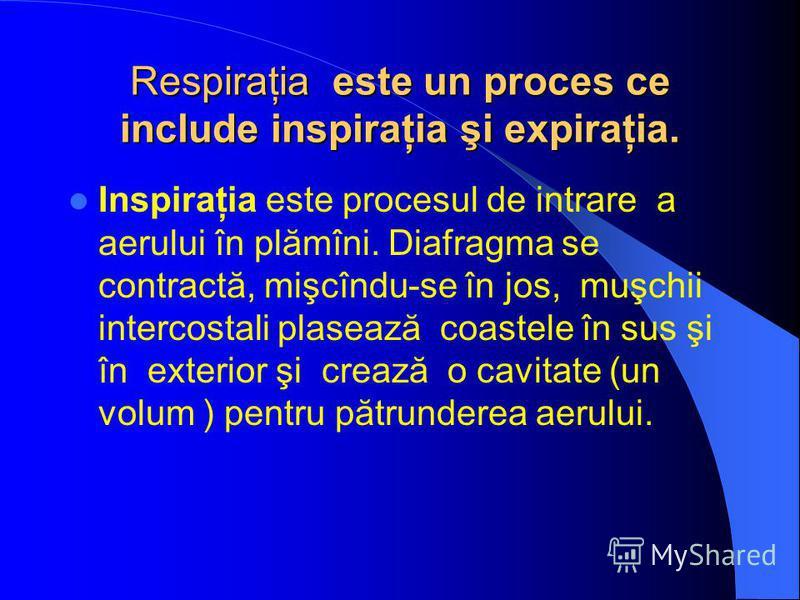 Respiraţia este un proces ce include inspiraţia şi expiraţia. Inspiraţia este procesul de intrare a aerului în plămîni. Diafragma se contractă, mişcîndu-se în jos, muşchii intercostali plasează coastele în sus şi în exterior şi crează o cavitate (un