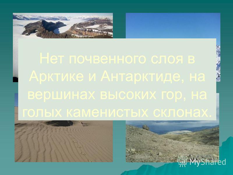 Нет почвенного слоя в Арктике и Антарктиде, на вершинах высоких гор, на голых каменистых склонах.