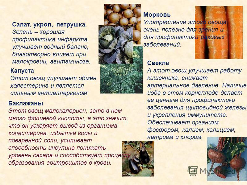 Салат, укроп, петрушка. Зелень – хорошая профилактика инфаркта, улучшает водный баланс, благотворно влияет при малокровии, авитаминозе. Морковь Употребление этого овоща очень полезно для зрения и для профилактики раковых заболеваний. Капуста Этот ово