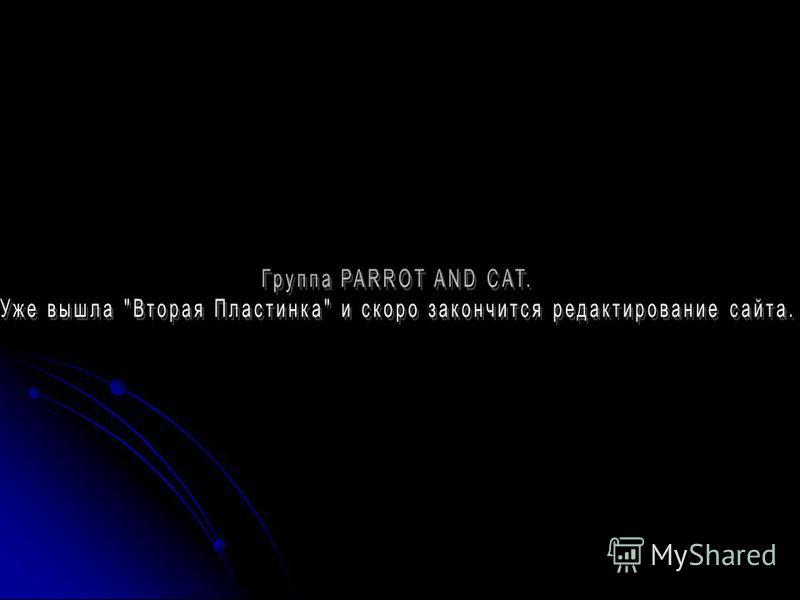 О группе PARROT AND CAT. 2006 2006