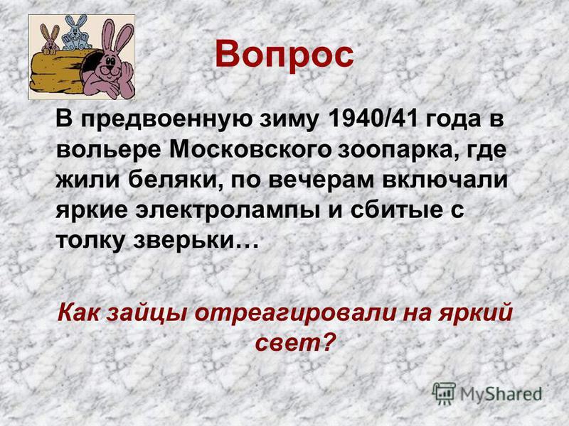 Вопрос В предвоенную зиму 1940/41 года в вольере Московского зоопарка, где жили беляки, по вечерам включали яркие электролампы и сбитые с толку зверьки… Как зайцы отреагировали на яркий свет?