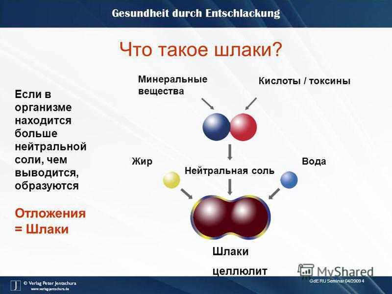 GdE RU Seminar 04/2009 4 Что такое шлаки? Минеральные вещества Кислоты / токсины Жир Нейтральная соль Вода Шлаки целлюлит Если в организме находится больше нейтральной соли, чем выводится, образуются Отложения = Шлаки