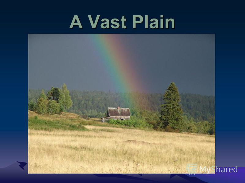 A Vast Plain