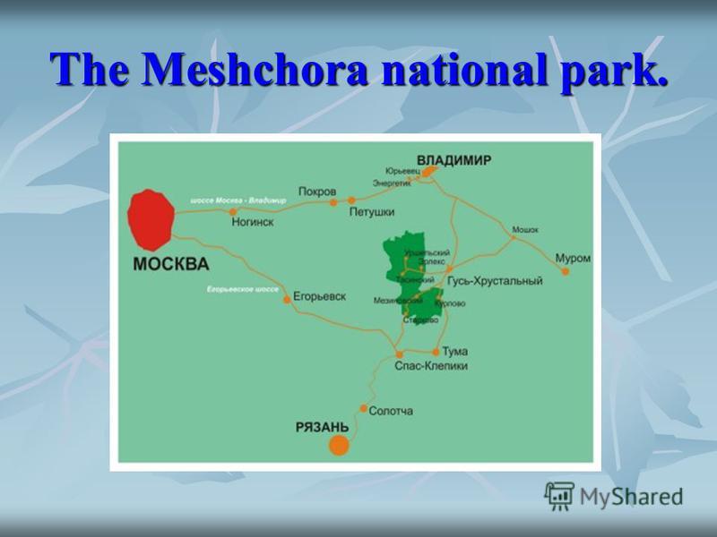 The Meshchora national park.