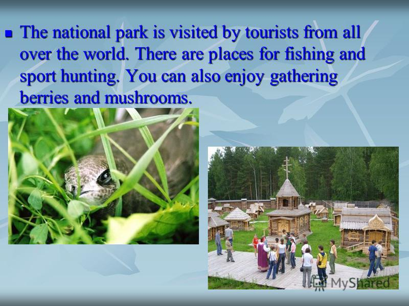 The national park is visited by tourists from all over the world. There are places for fishing and sport hunting. You can also enjoy gathering berries and mushrooms. The national park is visited by tourists from all over the world. There are places f
