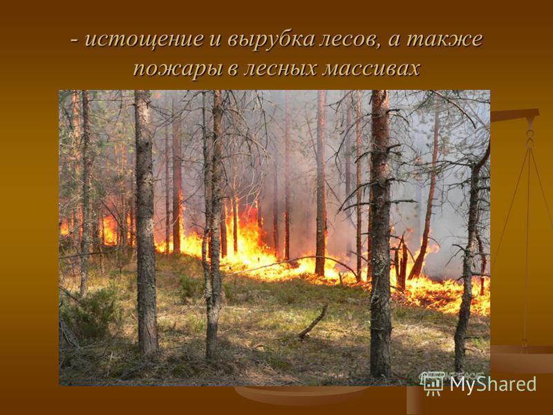 - истощение и вырубка лесов, а также пожары в лесных массивах