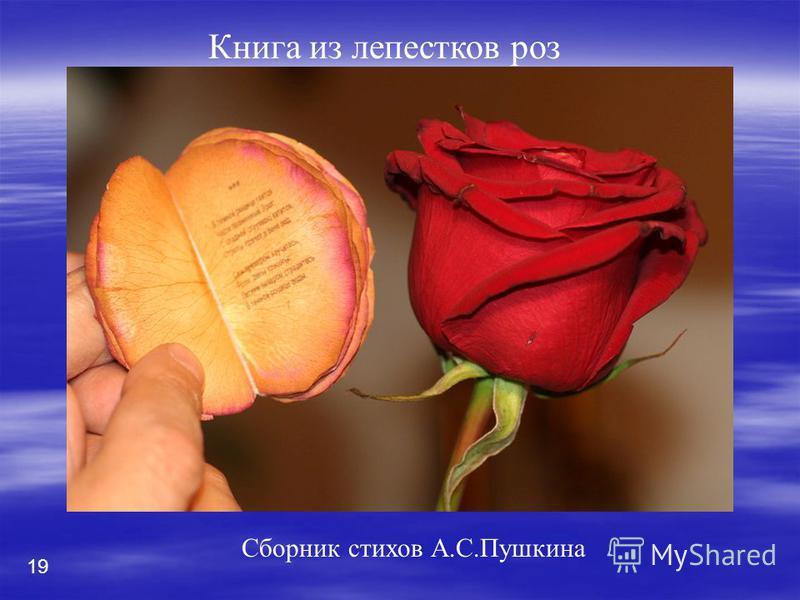 1919 Сборник стихов А.С.Пушкина Книга из лепестков роз