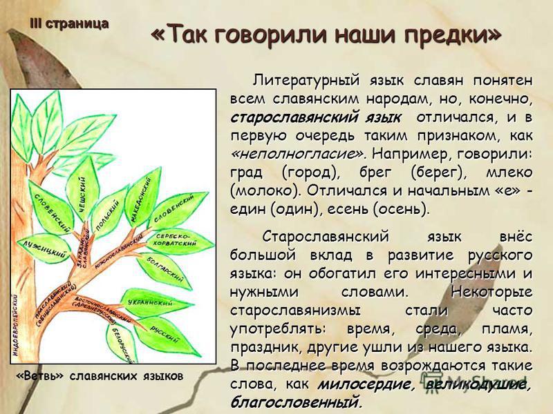 «Так говорили наши предки» III страница Литературный язык славян понятен всем славянским народам, но, конечно, старославянский язык отличался, и в первую очередь таким признаком, как «неполногласие». Например, говорили: град (город), брег (берег), мл