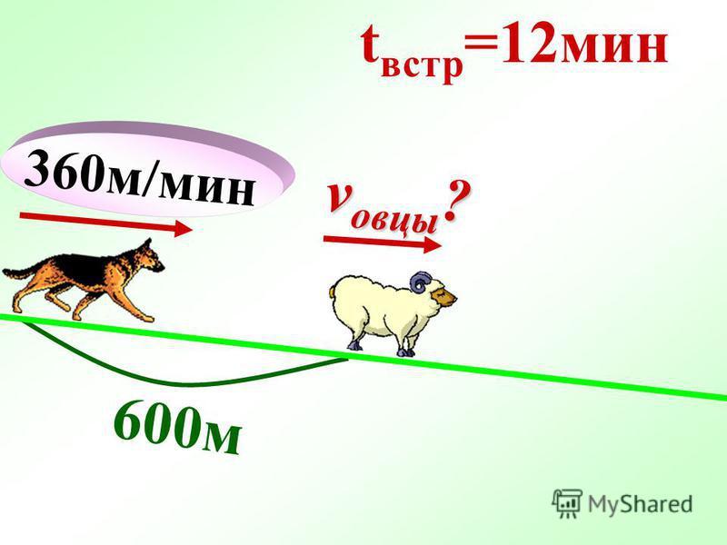 360 м/мин 600 м t встр =12 мин v овцы ?