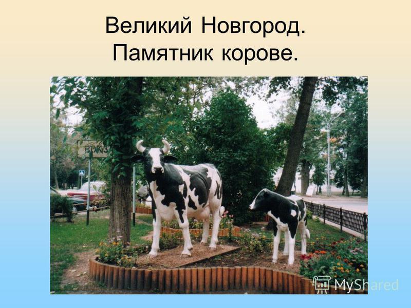 Великий Новгород. Памятник корове.