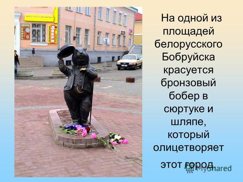 На одной из площадей белорусского Бобруйска красуется бронзовый бобер в сюртуке и шляпе, который олицетворяет этот город.