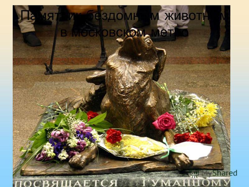Памятник бездомным животным в московском метро