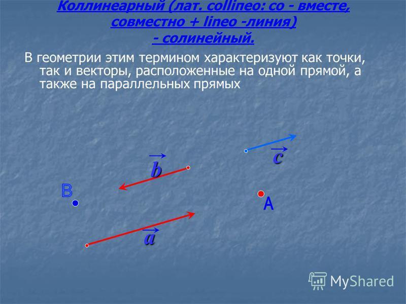 Коллинеарный (лат. соlliпео: со - вместе, совместно + lineo -линия) - солинейный. В геометрии этим термином характеризуют как точки, так и векторы, расположенные на одной прямой, а также на параллельных прямых a b c