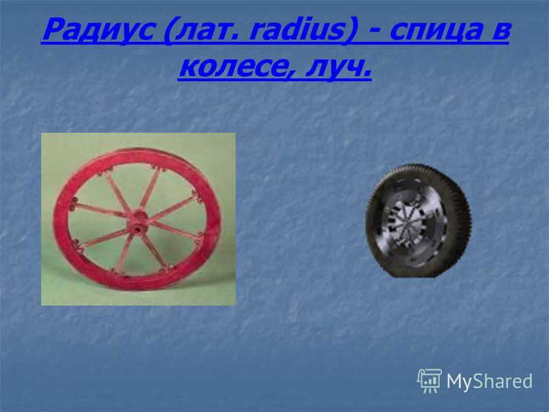 Радиус (лат. radius) - спица в колесе, луч.