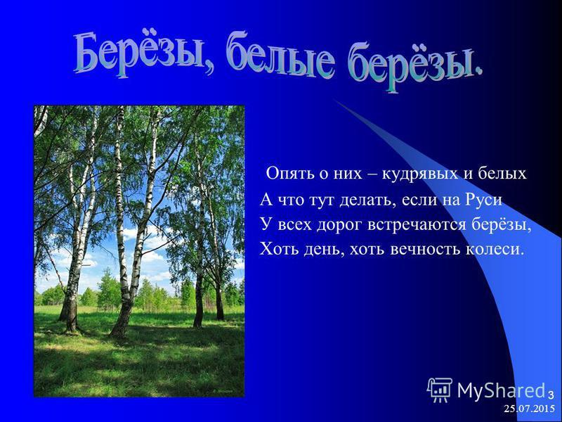 3 Опять о них – кудрявых и белых А что тут делать, если на Руси У всех дорог встречаются берёзы, Хоть день, хоть вечность колеси.