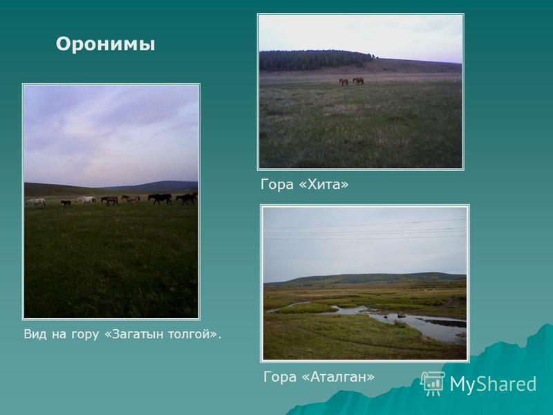 Оронимы Гора «Хита» Гора «Аталган» Вид на гору «Загатын толгой».