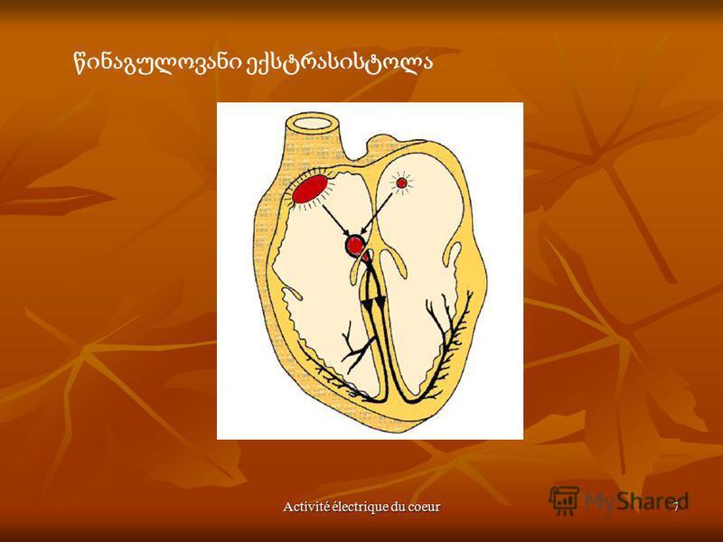 Activité électrique du coeur7