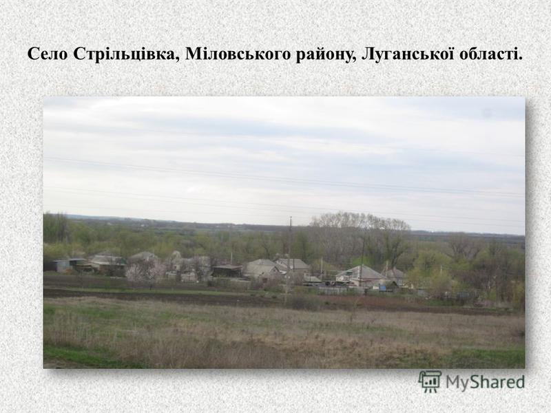Село Стрільцівка, Міловського району, Луганської області.