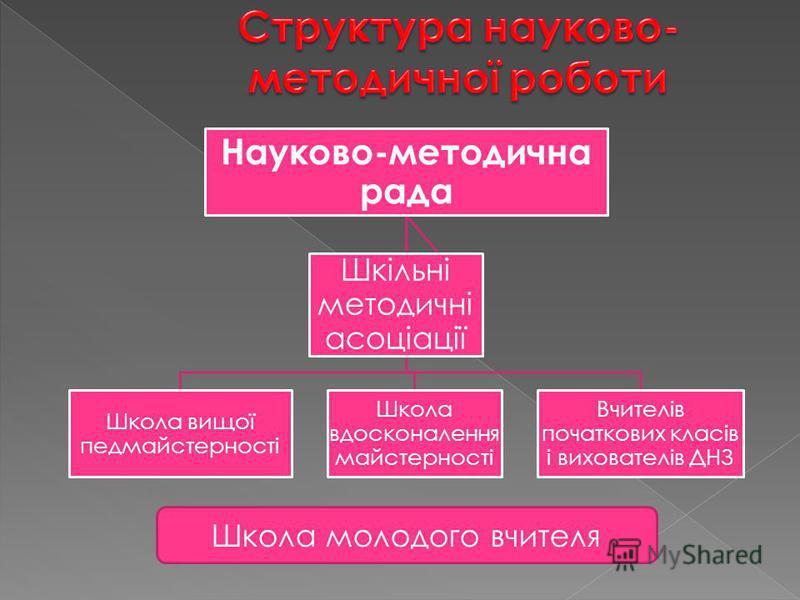 Школа молодого вчителя Науково-методична рада Школа вищої педмайстерності Школа вдосконалення майстерності Вчителів початкових класів і вихователів ДНЗ Шкільні методичні асоціації