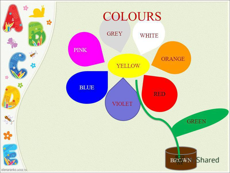 YELLOW BLUE VIOLET RED COLOURS ORANGE WHITE GREY BROWN PINK GREEN