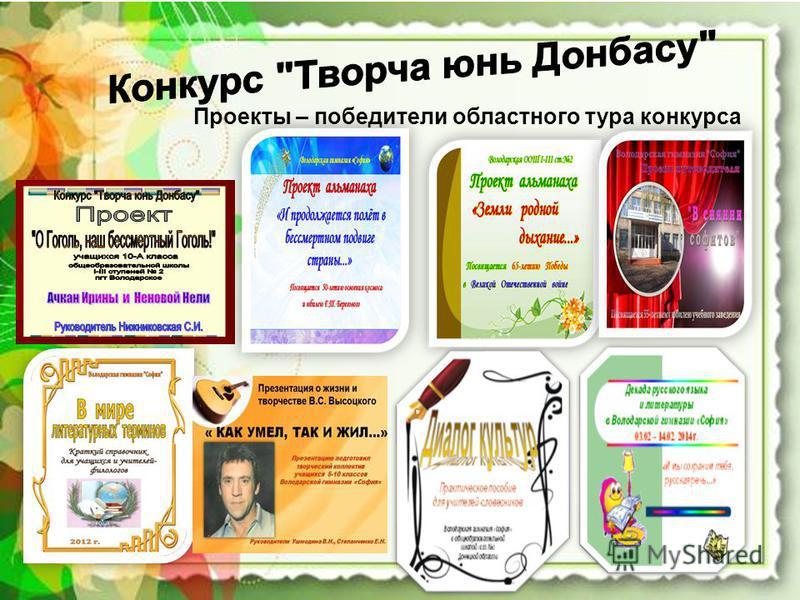 Проекты – победители областного тура конкурса