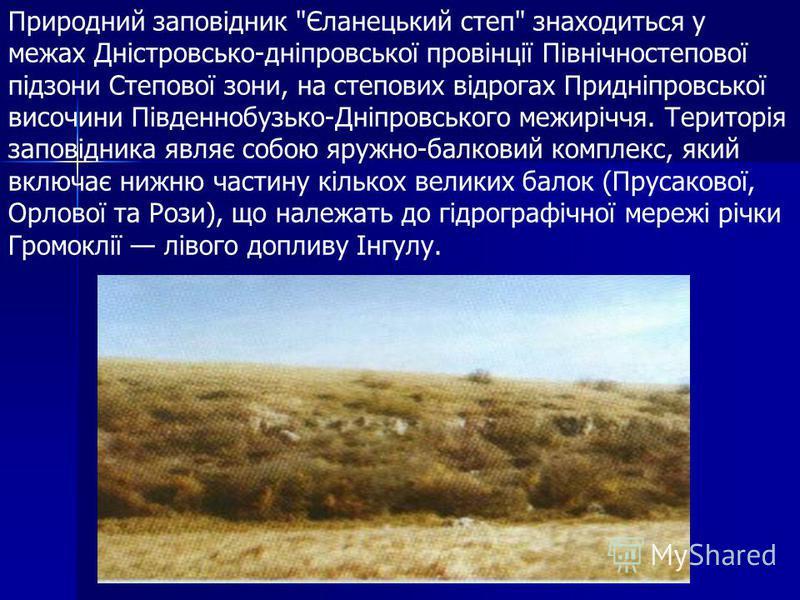 Заповідник призначений для збереження та відтворення степових природних комплексів Правобережної України. Він був організований задля охорони найбільшої у Північно-Західному Причорномор'ї ділянки цілинного степу і є першим і, поки що, єдиним степо