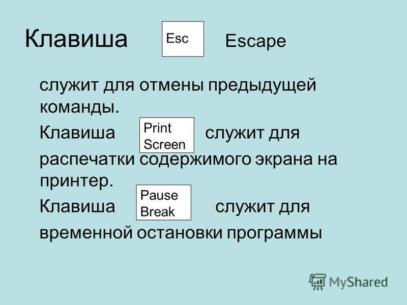 Клавиша Escape служит для отмены предыдущей команды. Клавиша служит для распечатки содержимого экрана на принтер. Клавиша служит для временной остановки программы Esc Print Screen Pause Break
