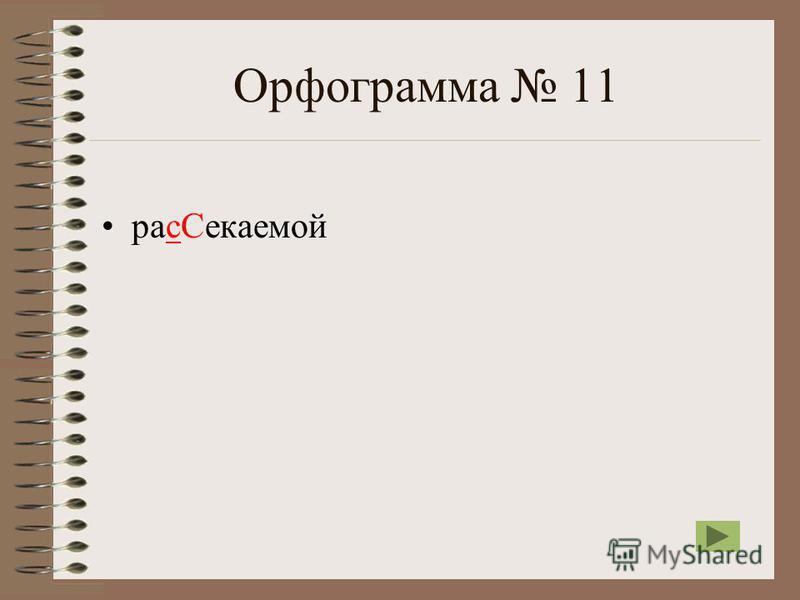 Орфограмма 11 рас Секаемой