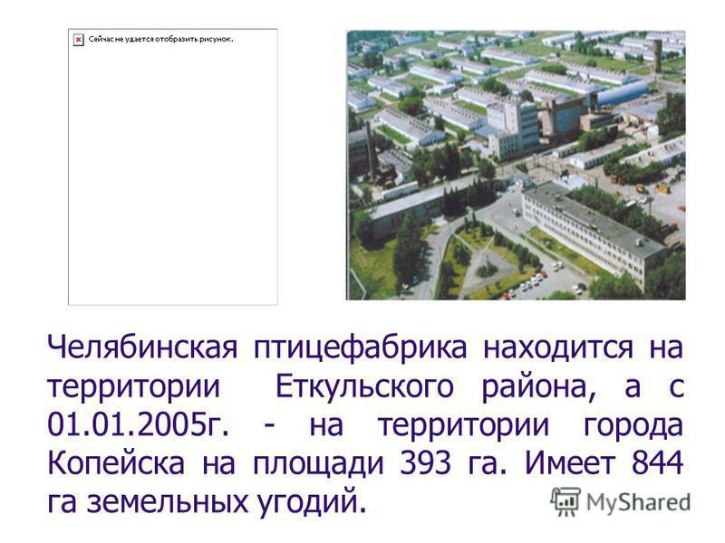 Челябинская птицефабрика находится на территории Еткульского района, а с 01.01.2005 г. - на территории города Копейска на площади 393 га. Имеет 844 га земельных угодий.